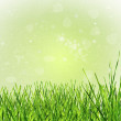 green gras — Stockfoto #11508854
