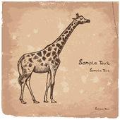 Picture Giraffe Art — Stock Vector