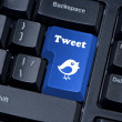 Button keypad with tweet and bird closeup. — Stock Photo