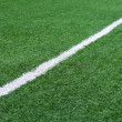 Stock Photo: Football field with white stripe.