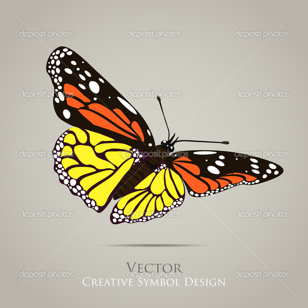 butterfly graphic design background � stock vector