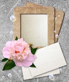Grunge frame with peony and paper — Stock Photo