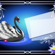 Black swan on blue background and paper for your text — Imagens vectoriais em stock