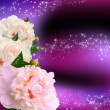 Peony and stars - Stock Photo