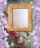 Photo frame with gladiolus — Photo