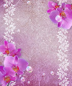 Orchid and openwork frame — Stock Photo