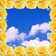 Roses frame and blue sky — Foto Stock