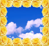 Roses frame and blue sky — 图库照片