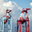 Stock Photo: Two Container Gantry Cranes
