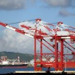 Stock Photo: Container Cranes and Industrial Ships