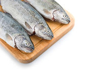 Three trout fish on the white background — Stock Photo