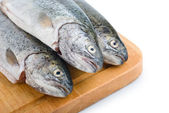 Fresh fish heads in a row on wooden board — Stock Photo