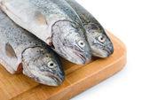 Frischfisch köpfe hintereinander auf holzbrett — Stockfoto