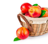 Fresh fruit nectarines in the basket — Stock Photo