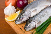 Fresh raw fish trout with vegetables — Stock Photo