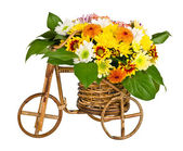 Decorative bicycle vase with flowers — Stock Photo