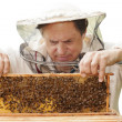 Royalty-Free Stock Photo: Beekeeper.