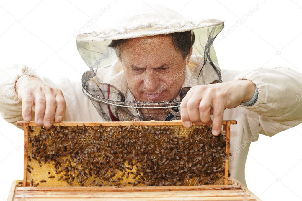 Beekeper and his bees. — Stock Photo #11234682
