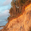 Baltic coast, Latvia. — Stock Photo #11831985