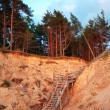 Baltic coast, Latvia. — Stock Photo
