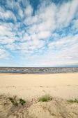 Tráva na moři. — Stock fotografie