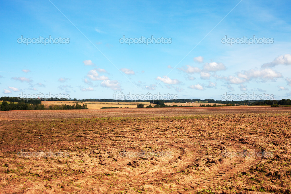 Brown field and blue sky. — Stock Photo #12185716