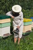 Bee keeper. — Stock Photo