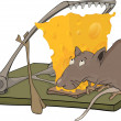 Rat cheese and a mousetrap — Stock Vector