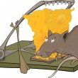 Rat cheese and a mousetrap - Stock Vector