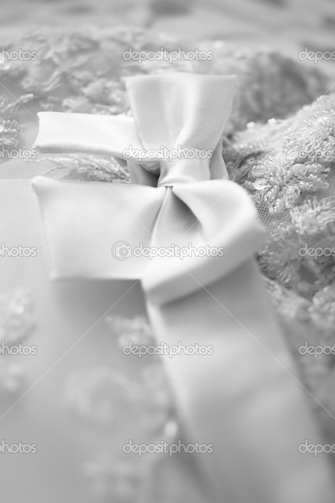 A close up of a bridesmaid dress with a large silk bow — Stock Photo #11239534