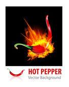 Burning Chili Pepper — Stock Vector