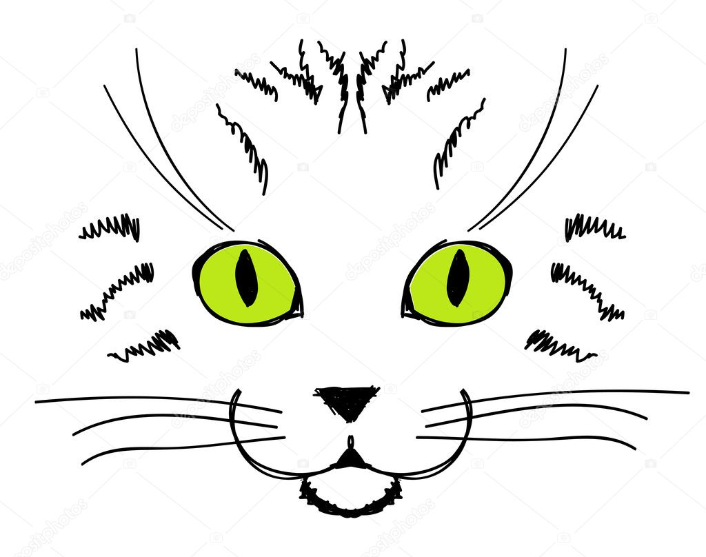 Sketch Cute Cat Cute Cat Face Hand Drawing