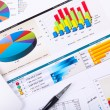 Graphs, charts, business table. — Stock Photo #10828994