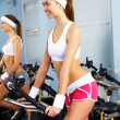 Young woman doing sport in gym - Photo