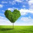 Green grass heart symbol - Stock Photo