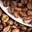 Coffee beans and white cup — Stock Photo #11348623