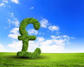 Green grass UK pound symbol — Stock Photo