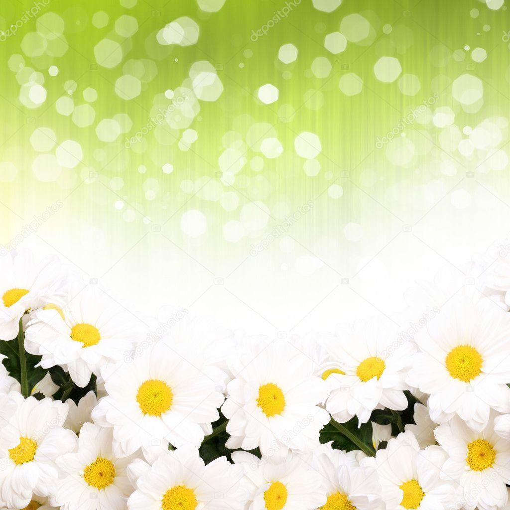 霜降色彩缤纷背景 — 图库照片08sergeynivens