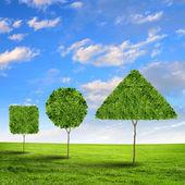 Zelené trávě tvar — Stock fotografie