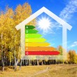 Colourful house against nature background — Stock Photo #12264307