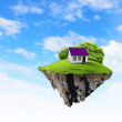 A piece of land in the air with house and tree. — Стоковая фотография
