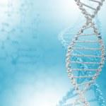 DNA strand illustration — Stock Photo #12376656