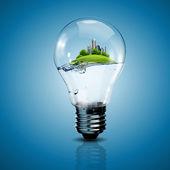 Bombilla de luz eléctrica y una planta de interior — Foto de Stock