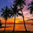 Evening on the beach of the island of Koh Chang in Thailand — Stock Photo
