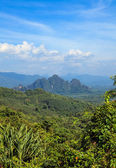 The tropical valley with rainforests and mountains — Stock Photo