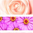 Set of floral banners — Stock Photo