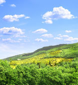 Typical Italian landscape — Stock Photo