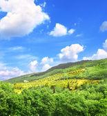 Tipico paesaggio italiano — Foto Stock