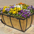 Stock Photo: Flower pot.