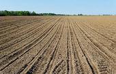 Naturliga plöjt fältet. — Stockfoto